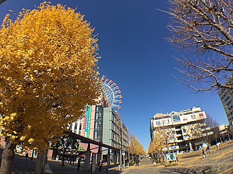 ファイル 2704-4.jpg